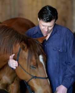 Horse and veteran